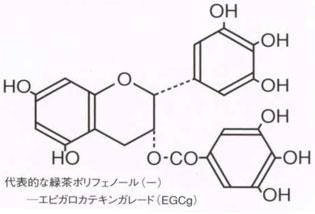 花粉症対策に最適 緑茶ポリフェノール化合物・カテキン エピガロカテキンガレード(EGCg)通称メチル化カテキン